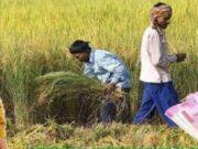 पीएम किसान सम्मान निधि योजना स्टेटस